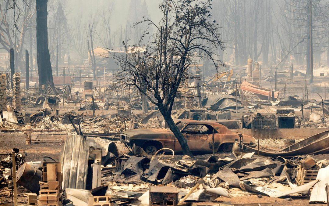 Donate to support disaster relief for California Wildfires